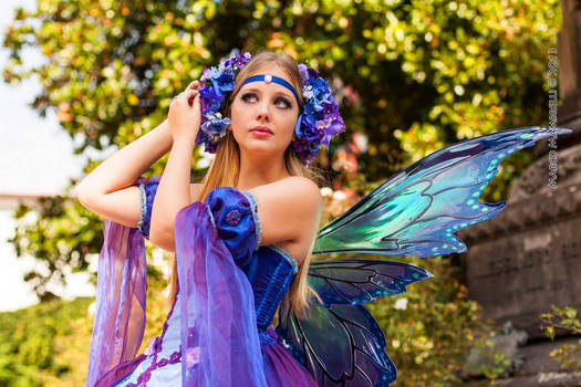 Fairy Hairdo