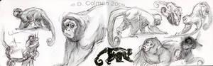 Sketchbook_Zoo class