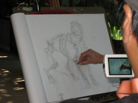 Animal Drawing Workshop Pic2