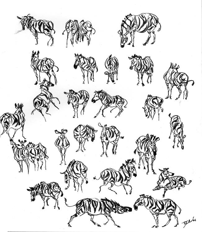 The Art Of Character Design With David Colman Download : Zebras everywhere by davidsdoodles on deviantart
