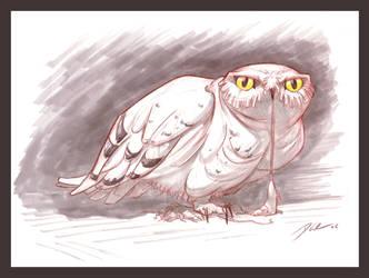 Snow Owl2 by davidsdoodles