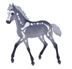 8393 Padro Foal Design by equ1ne
