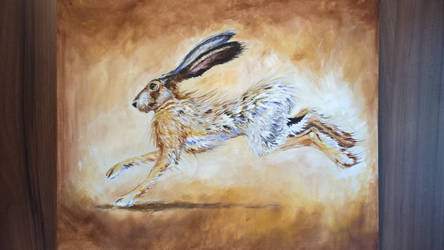 Running Hare by froggywoggy11