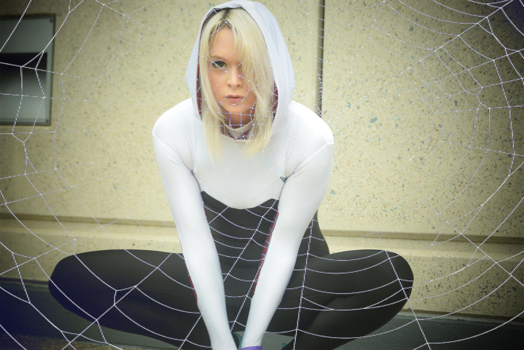Spider-Qwen Cosplay by slayer500