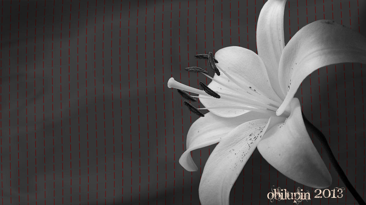 Сонник Цветок приснился к чему снится во сне Цветок