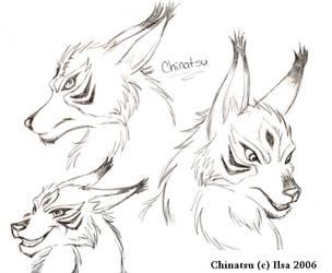 Chinatsu-sketches by InuIrusa-chan
