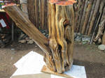 Yew wood table project #1