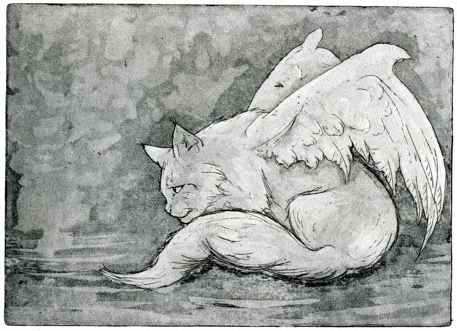 Angel cat, Hand pulled Etching + Aquatint work by ZyriFrost