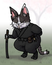 The Ninja Cat Elder