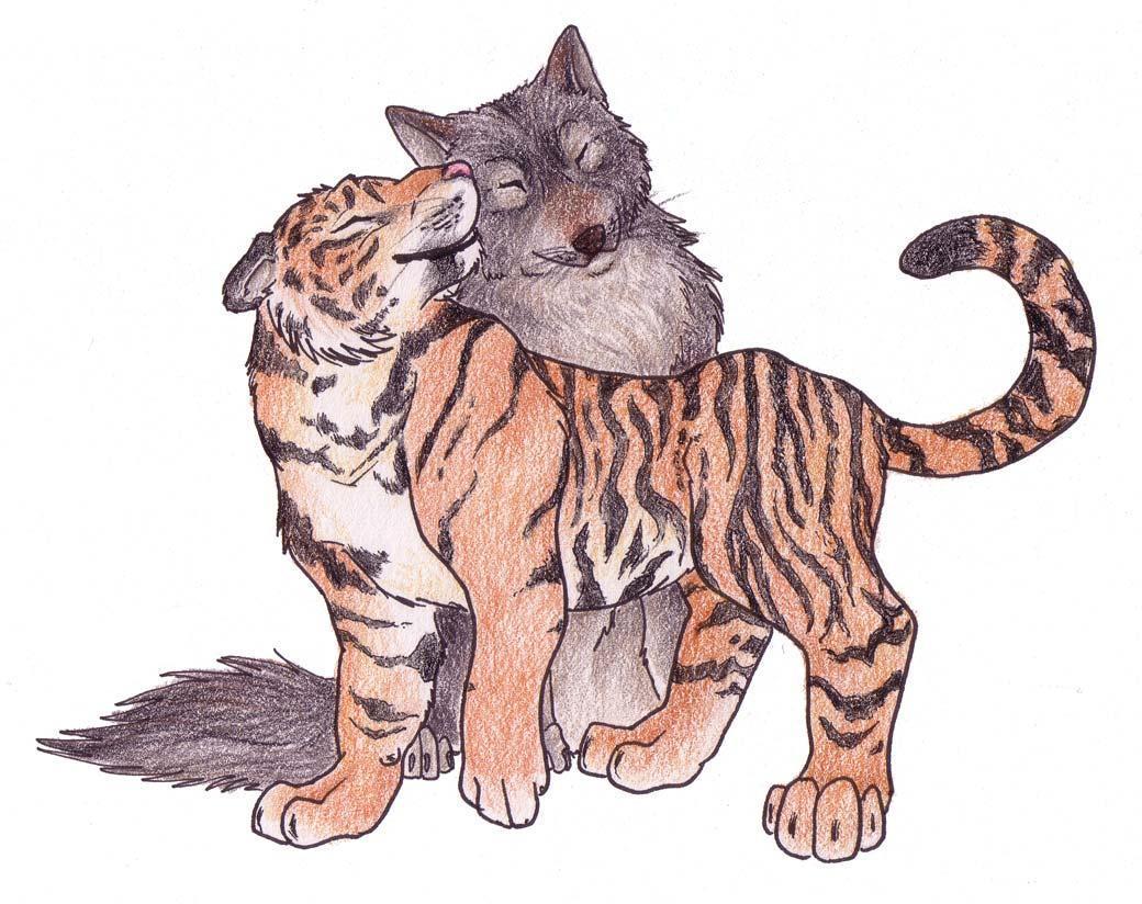 сообщение называй меня мой тигр зайцев отличие
