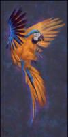 Bird Painting 5 Day #355