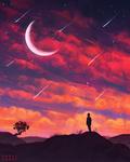 Falling Stars - Day #241