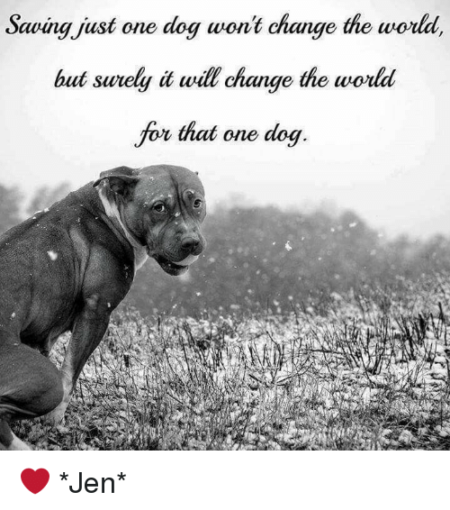 Saving-just-one-dog-wont-change-the-world-but-sure by Ry-Spirit