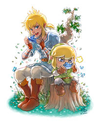 The Legend of Link Lonk