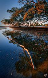 Nudgee Beach QLD