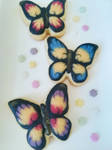 Butterfly Cookies by MeYaIeM