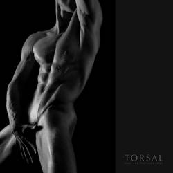 frontal by Torsal