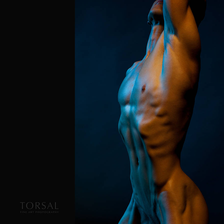chromatic nude by Torsal