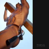 Carpenter by Torsal