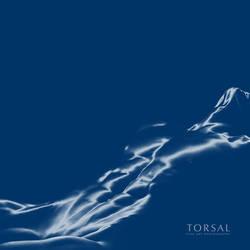 TORSAL