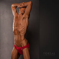 Hom by Torsal
