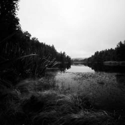 Lake Matheson III