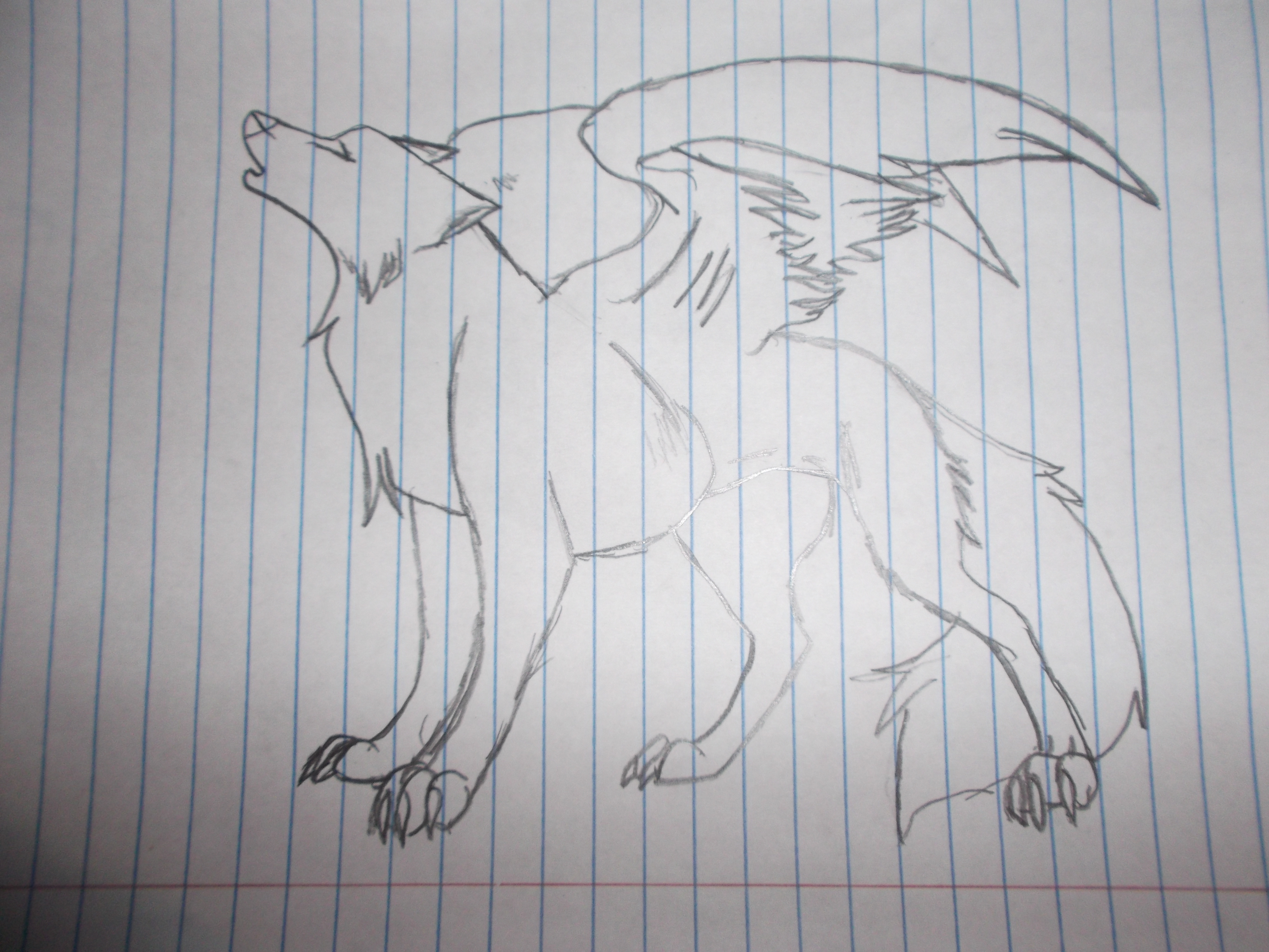 cool easy wolf drawings
