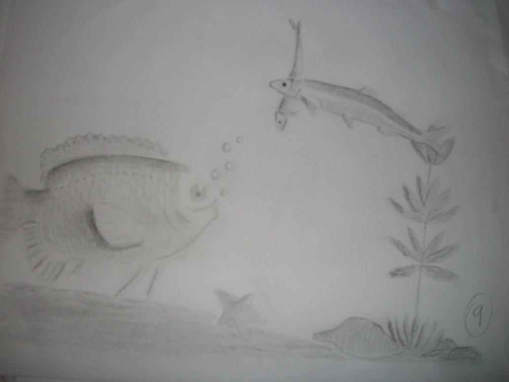 Drawing a fish bowl.. by LaniNila