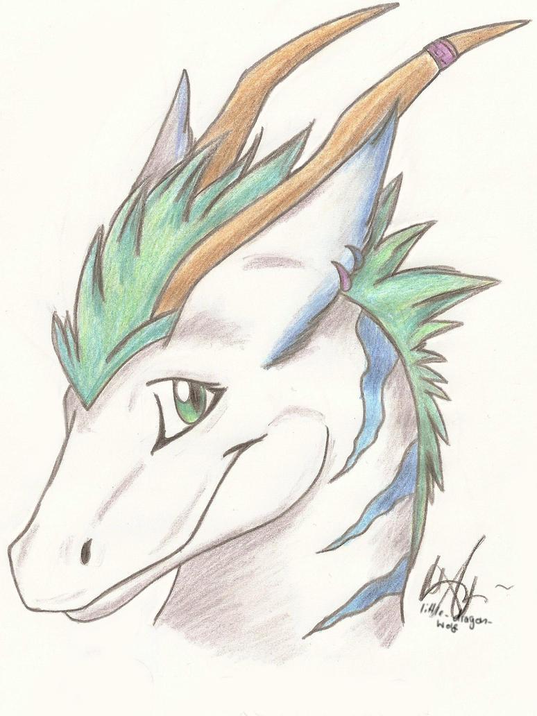 Dragon Head By Littledragonwolf How To Draw