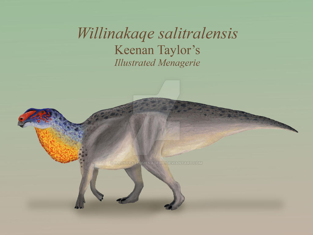 Willinakaqe salitralensis by IllustratedMenagerie