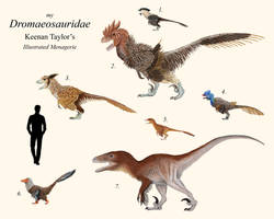 My Dromaeosauridae by IllustratedMenagerie
