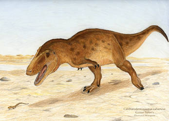 Carcharodontosaurus saharicus by IllustratedMenagerie