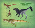 Drakes of Pakardia