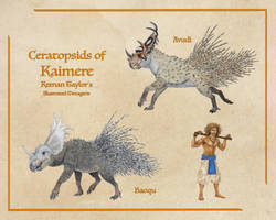 Ceratopsids of Kaimere