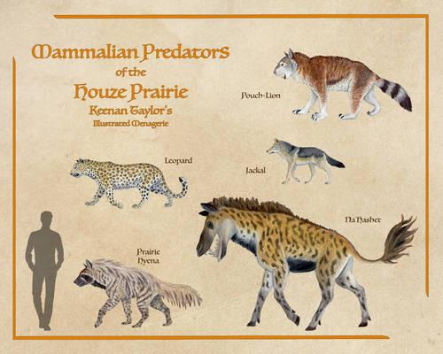 Mammalian Predators of the Houze Prairie