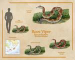 Root Viper