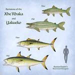 Revisions of the XheRhaka and Yakueko