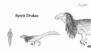 Spirit Drakes