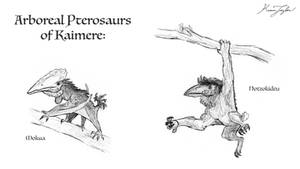 Arboreal Pterosaurs