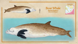 Boar Whale