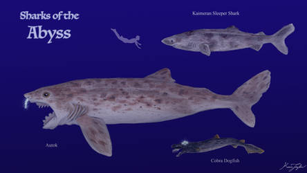Sharks of the Abyss