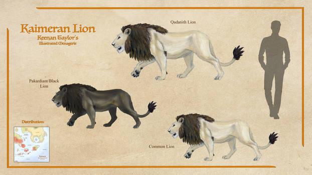 Kaimeran Lion