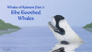 Whales of Kaimere Part 1: The Toothed Whales