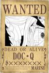 Doc Q