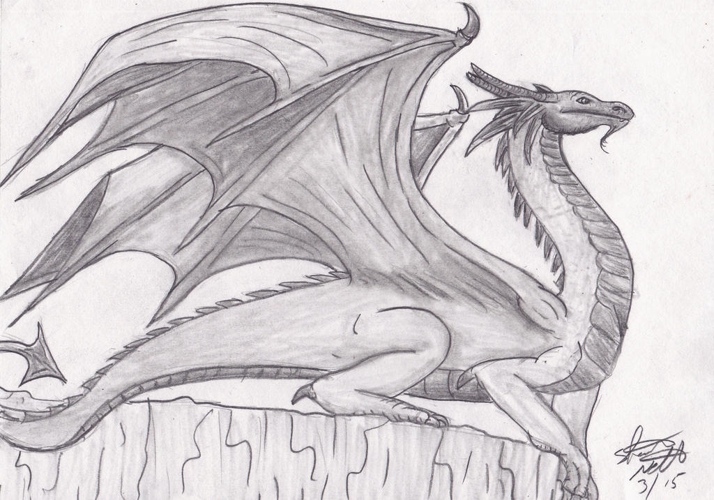 Dragon pencil sketch finished by shelandrystudio