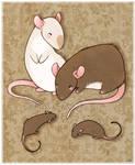 rattie babies