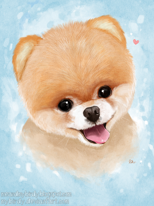 Must see Boo Army Adorable Dog - boo_by_mybirdy-d5x7cc5  Perfect Image Reference_104270  .png