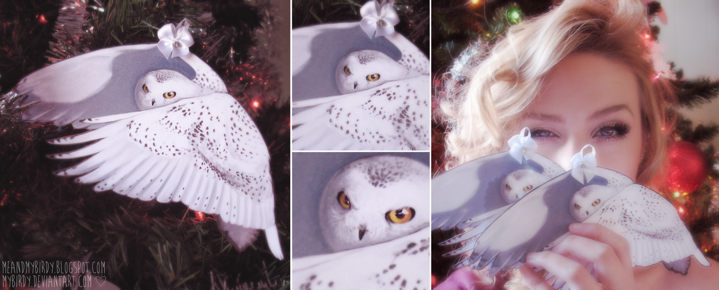 owly mcsteakybeak christmas ornaments 2013~ by mybirdy