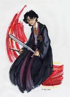 Harry 2004 by kuabci