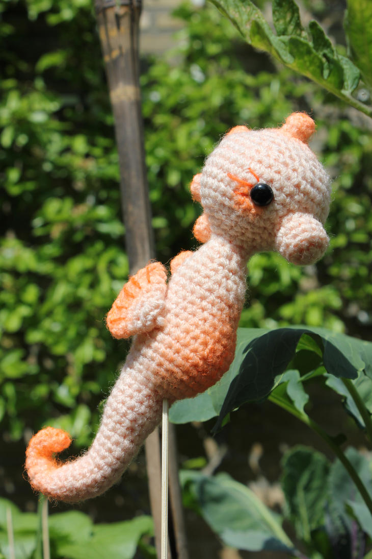 Seahorse by jolieke10 on deviantart seahorse by jolieke10 bankloansurffo Image collections